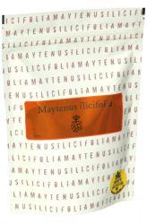 Energy tee Maytenus ilicifolia 105 g