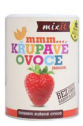 Mixit Erdbeere – knusprige Frucht 50 g