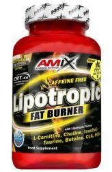Amix Lipotropic Fat Burner 100 Kapseln