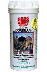 Cosmos Coriolus 11 g – 60 Kapseln ─ Veterinärmedizin mit der Trametes versicolor (Coriolus versicolo