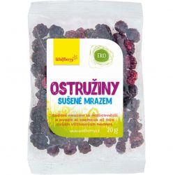 Wolfberry Brombeeren - lyophilisierte Früchte - gefriergetrocknet 20 g