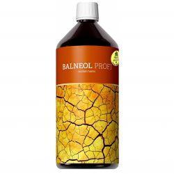 Energy Balneol PROFI 1000 ml