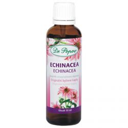 Dr. Popov Kräutertropfen Echinacea purpurea 50 ml