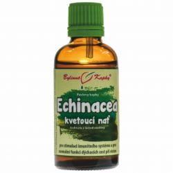 Bylinné kapky Echinacea - Blütenstiel 50 ml